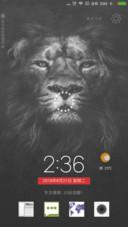 东方雄狮·觉醒